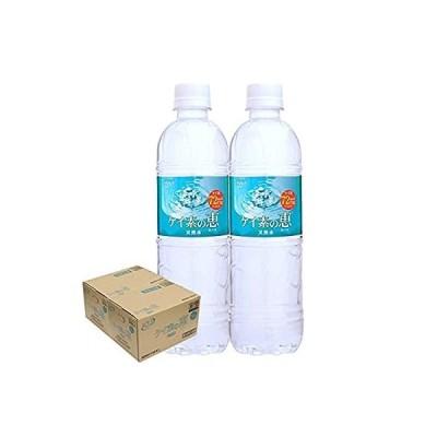 【2ケースセット】ケイ素の恵 525mlペットボトル×24本入×(2ケース)