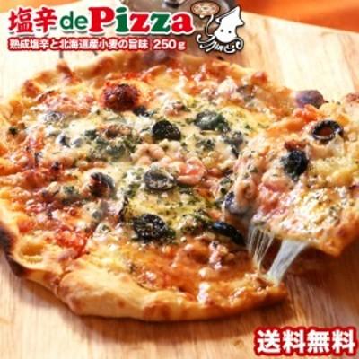 ピザ 塩辛deピザ 塩辛でピザ TVで紹介されました   塩辛deピザ 250g  送料無料