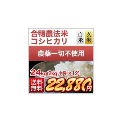 お米 白米 合鴨農法米 熊本県産 コシヒカリ 24kg(2kg×12袋) 特A評価 令和2年(2020年)【米袋は真空包装】