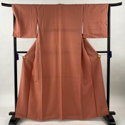 色無地 美品 優品 地紋 サーモンピンク 袷 身丈163.5cm 裄丈66.5cm M 正絹 中古