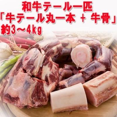 【クール便選択必要!】日本産コリハンマリ(テール&ゲンコツ)約3~4Kg ★韓国食材/牛骨/牛肉/ゴムタン