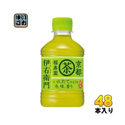 サントリー 緑茶 伊右衛門 (VD用) 280ml ペットボトル 48本 (24本入×2 まとめ買い) 〔お茶〕
