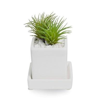 フェイクグリーン 人工観葉植物 造花 ミニ エアープランツ 白玉石 皿付ミニベース GREENPARK PRGR-0994S
