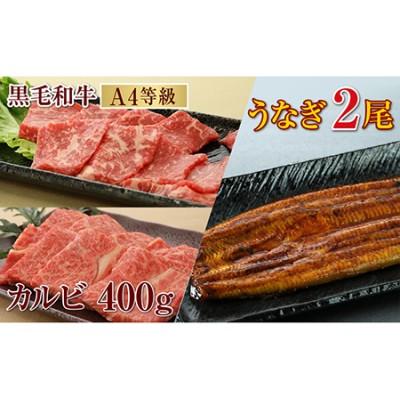 385-1 うなぎ2尾&黒毛和牛カルビ焼肉400g