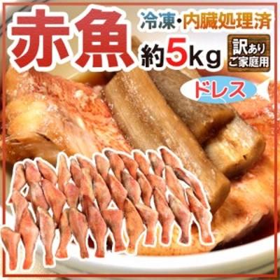 """""""赤魚 ドレス"""" 約5kg 訳あり 大きさおまかせ ノルウェー/カナダ/イギリス/アラスカ産など 送料無料"""