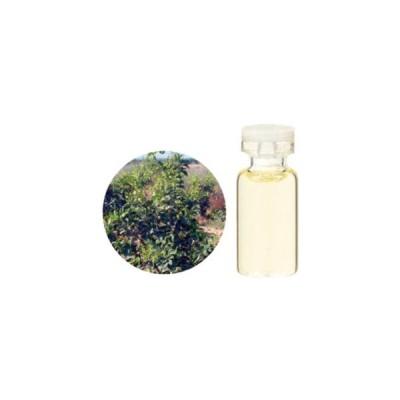 生活の木 エッセンシャルオイル プチグレイン・ビターオレンジ 3ml 08-449-3410 返品種別A