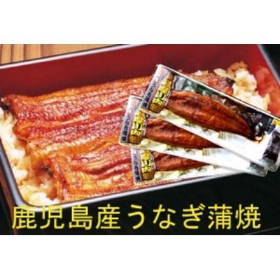 土用丑の日は九州薩摩川内産 たれ付き国産うなぎ蒲焼き真空パック(九州産ウナギかば焼き) 約170g×3尾