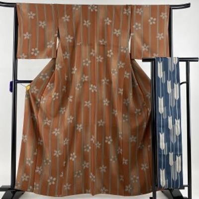 小紋 美品 優品 半幅帯セット さんび 洗えるお着物 桜 縞 ぼかし 赤茶 袷 身丈162cm 裄丈65cm M 化繊 中古