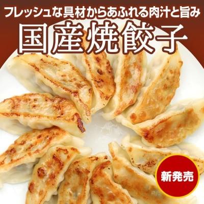 母の日 ギフト 国産焼餃子 20個入(400g)(冷凍商品)耀盛號(ようせいごう)
