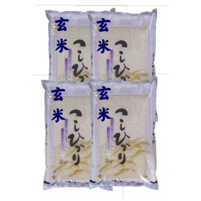 【玄米】 「会津産コシヒカリ20kg  (5kg×4袋)  令和2年産石抜き処理済「ふくしまプライド。体感キャンペーン(お米)」