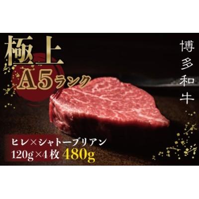 2V7【極上博多和牛A5等級】ヒレ×シャトーブリアンステーキ 480g(120g×4枚)