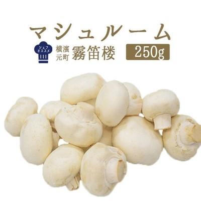 マッシュルーム(シャンピニオン パリ)フレッシュ <フランス産>【250g】【冷蔵品】