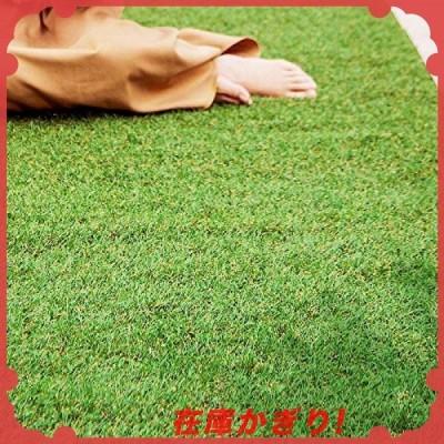 アイリスオーヤマ 人工芝 防草 国産 1*10 ロールタイプ 芝丈3cm Uピン付属なし リアル人工芝 防草タイプ RP-30110 雑