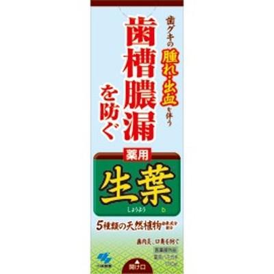 小林製薬 薬用 生葉(しょうよう) 薬用ハミガキ 100g【fs2gm】fs04gm