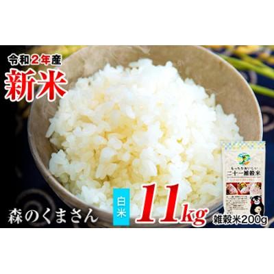 令和2年産 森のくまさん 10kg 熊本 県産 白米10kg+国産雑穀米 令和2年 精米 長洲町《3-7営業日以内に順次出荷(土日祝除く)》