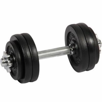 リーディングエッジ (LEADING EDGE) アイアンダンベル 15kg 単品 LE-IDB15 【トレーニング器具 スポーツ用品 筋トレ ベンチプレス ダン