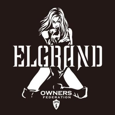 カッティングステッカー 日産(NISSAN)エルグランド ELGRAND bondage 車 カー ステッカー アクセサリー シール ガラス[◆]