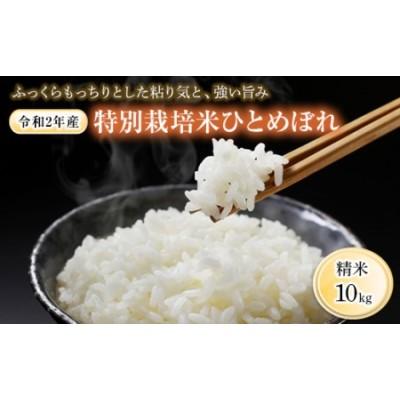 《令和2年産》特別栽培米ひとめぼれ 10kg(5kg×2) 1001