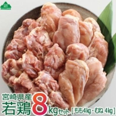 36-122_宮崎県産若鶏<8kg>セット