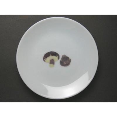 【B級品】しいたけ 野菜の小皿 [普段使いの食器]
