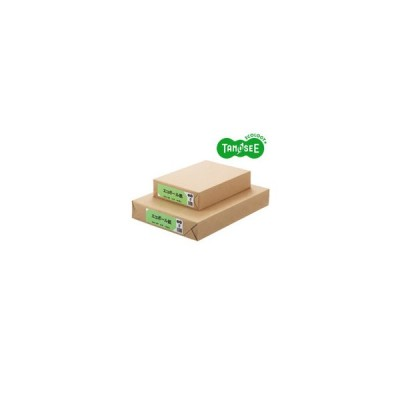 オリジナル TANOSEE エコボール紙A3 450g/m2 100枚包(EBA3-100P)