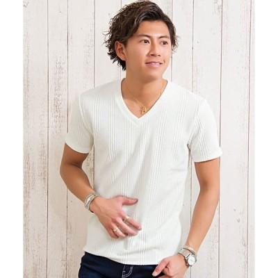 tシャツ Tシャツ ふくれストライプ柄Vネック半袖Tシャツ / CAST19-29