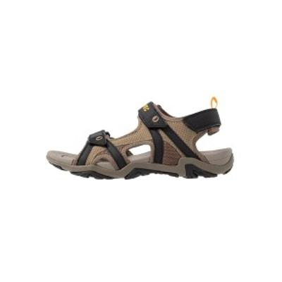 ハイテック メンズ サンダル シューズ CRATER - Walking sandals - dark taupe/light taupe dark taupe/light taupe
