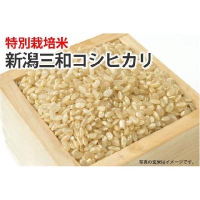 特別栽培米・新潟三和コシヒカリ【玄米】1kg