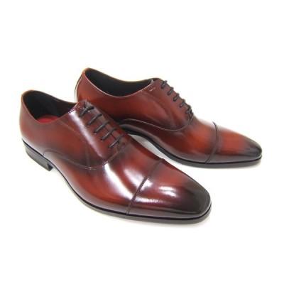 カルロメディチ 紳士靴 ストレートチップ カジュアル ビジネス 送料無料 3Eワイズ ブラウン