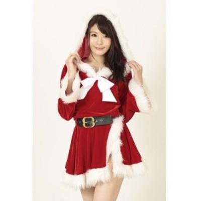 N『初雪サンタのプレゼント』コスプレ衣装 パーティー・ハロウィンに! KA0201RE
