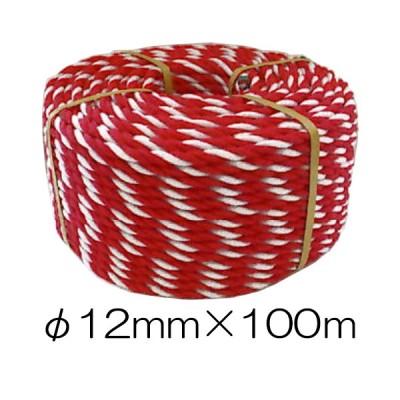 紅白ロープ #12×100m 太さ約9mm 約3.7kg (zm)