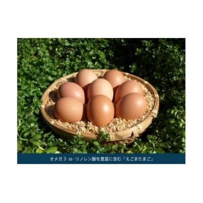 平飼い・有精卵 えごまたまご 40個入り (H037101)