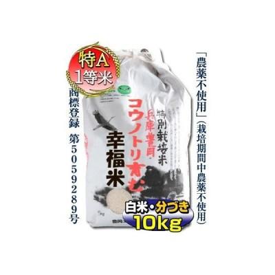 新米・当日精米 10kg コシヒカリ 白米 5kg×2 農薬不使用 特別栽培米 兵庫県 但馬産 コウノトリ育む幸福米 白米 特A 一等米 令
