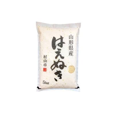 村山市 ふるさと納税 令和2年産はえぬき10kg(5kg×2)玄米