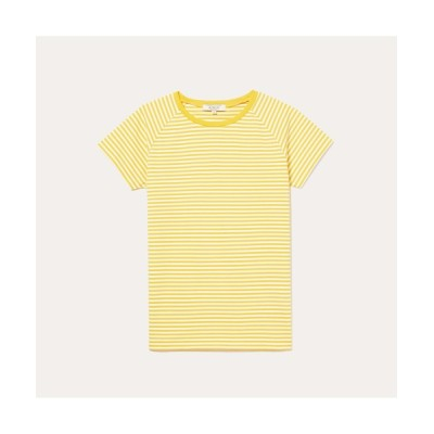 tシャツ Tシャツ DFT ボーダーTシャツ