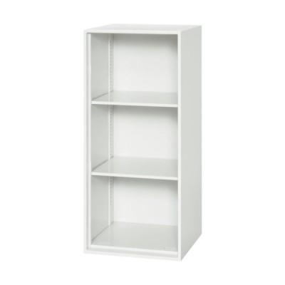 ダイシン 壁面収納庫 オープン型 上下兼用W450 ホワイト ( V445-10K ) (メーカー取寄)
