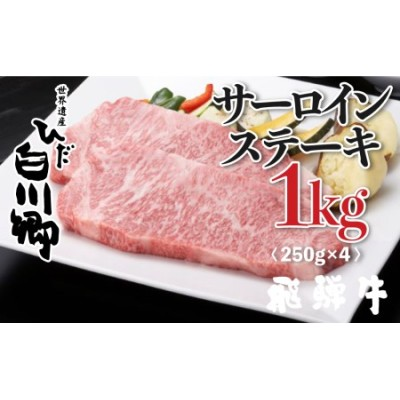 飛騨牛 サーロインステーキ 250g×4 1kg JAひだ ステーキ お中元 お歳暮 敬老の日ギフト [S119]