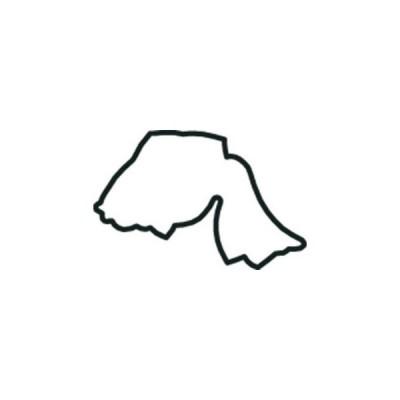 たかもりの生抜 極小 金魚A (尾垂れ型)