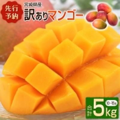 <先行予約>宮崎県産 訳ありマンゴー 5kg  【E129】