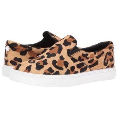 スティーブ マデン スニーカー シューズ レディース Ecentrcl Sneaker Leopard