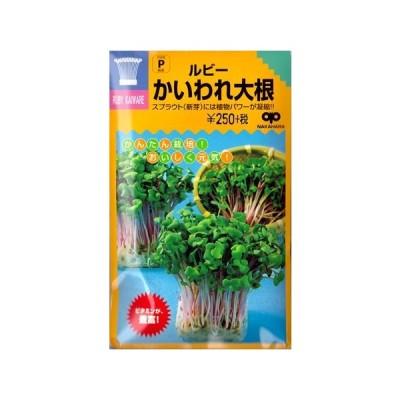 【スプラウト】ルビーかいわれ大根【中原採種場】(50ml)野菜種