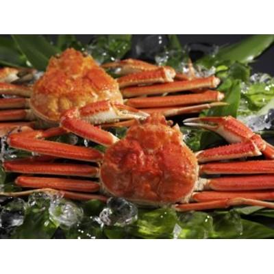 カニ かに 蟹 ボイルずわいがに姿400g2尾 ギフト セット 詰め合わせ 贈り物 贈答 産直 内祝い 御祝 お祝い お礼 返礼品 贈り物 御礼 食品