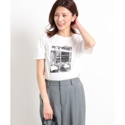 Reflect / 【接触冷感/UVカット/洗える】フォトプリントTシャツ WOMEN トップス > Tシャツ/カットソー