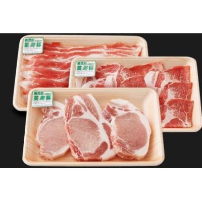 【鹿児島県産】茶美豚 しゃぶしゃぶ用 & とんかつ用 900g