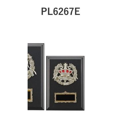 楯 PL6267E 17×12cm 文字入れ無料