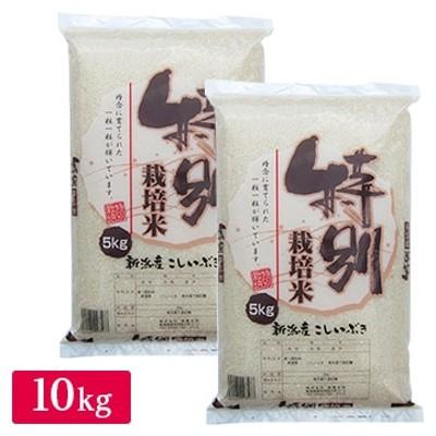 産地直送 令和2年産 特別栽培米 新潟産こしいぶき10kg(5kg×2)
