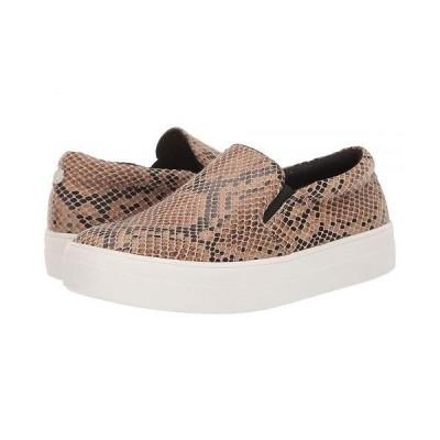 Steve Madden スティーブマデン レディース 女性用 シューズ 靴 スニーカー 運動靴 Gills Sneaker - Taupe Snake