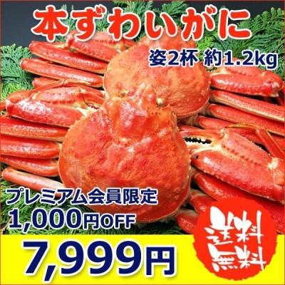 本 ズワイガニ 姿 2杯 約1.2kg 特大 ボイル ずわいがに ずわい蟹 ズワイ蟹 送料無料 ギフト 3〜5人前 お取り寄せグルメ
