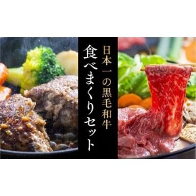 E-54 豊後牛ハンバーグ&おまかせすきやき肉(500g)セット