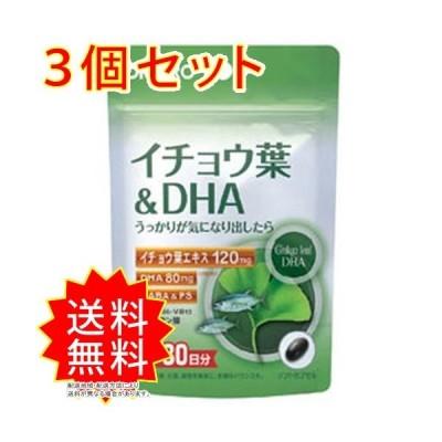 3個セット PD イチョウ葉&DHA オリヒロ サプリメント まとめ買い 通常送料無料